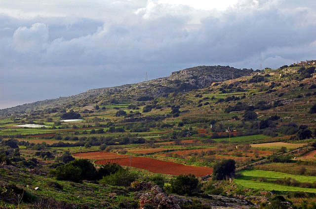 Mizieb Valley, Malta, in winter: Photo: Leslie Vella