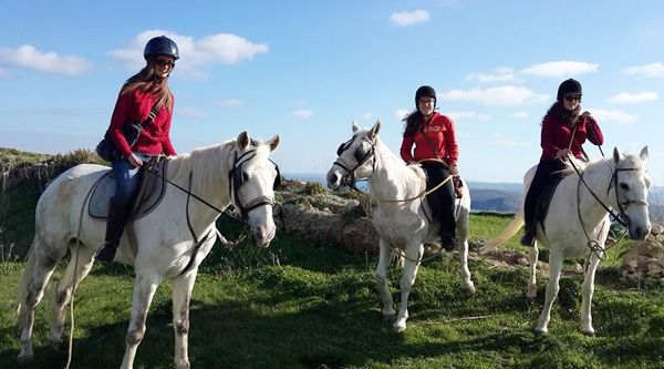 horse riding in Gozo